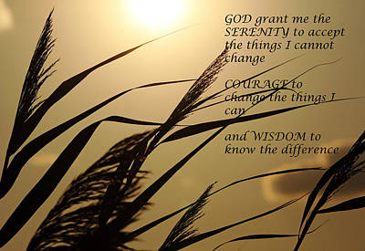 Photograph - Serenity Prayer With Sunset Grass by Debbie Oppermann