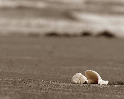 Photograph - Serenity by Steven Myers