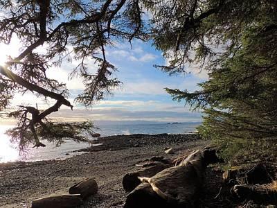 Photograph - Serenity Surroundings  by Karen Horn