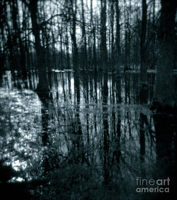 Photograph - Series Wood And Water 7 by RicharD Murphy
