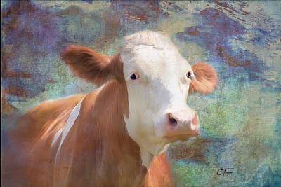 Cow Mixed Media - Serious Business by Colleen Taylor