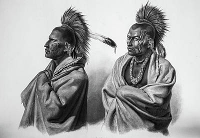 Native Drawing - Serious Massika Saki Native Americans by Douglas Barnett