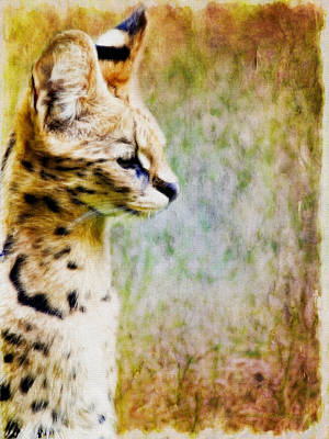 Digital Art - Serval Photoart _1a by Walter Herrit