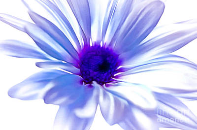 Blue Flowers Photograph - Set Me Free by Krissy Katsimbras