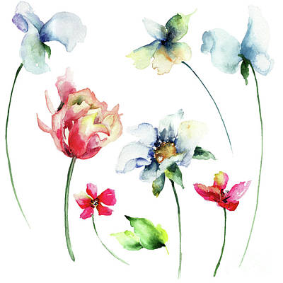 Painting - Set Of Flowers by Regina Jershova