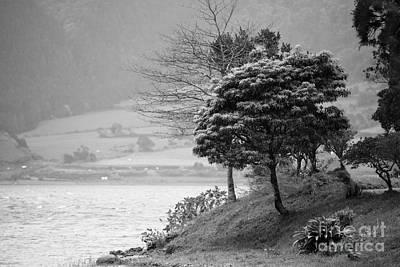 Sete Photograph - Sete Cidades Lakes by Gaspar Avila