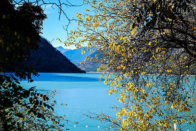 Photograph - Seton Lake Through The Foiliage by John McArthur