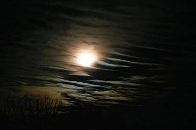 Photograph - Setting Moon In Striated Clouds by Kathryn Meyer