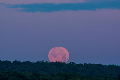 Photograph - Setting Strawberry Moon by Buddy Scott