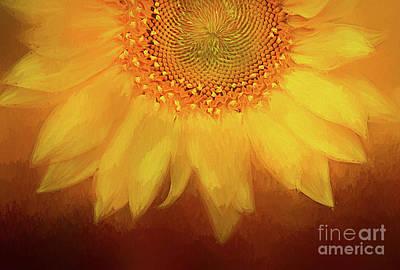 Setting Sun Art Print by Darren Fisher