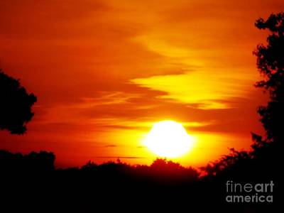 Photograph - Setting Sun by Tim Townsend