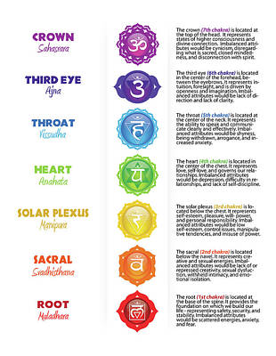Digital Art - Seven Chakra Poster With Descriptions by Serena King