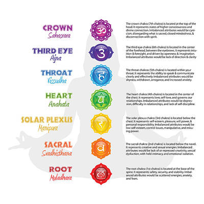 Digital Art - Seven Chakras Poster by Serena King