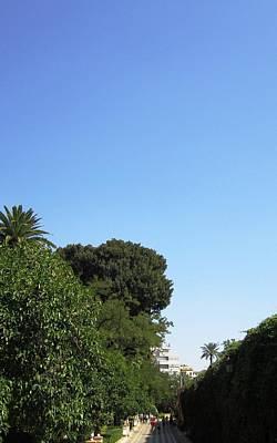Photograph - Seville Garden Pathway Spain by John Shiron