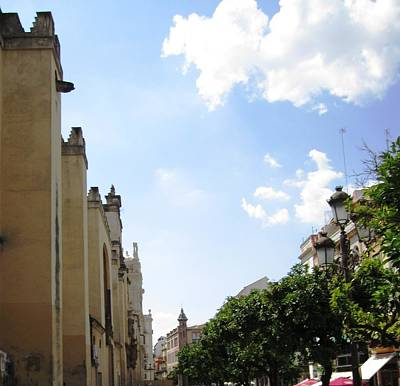 Photograph - Seville Street Scene V Spain by John Shiron