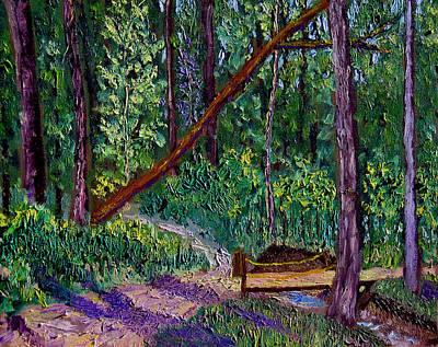 Sewp Trail Bridge Art Print by Stan Hamilton