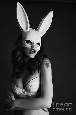 Provocative Photograph - Sexy White Bunny by Jt PhotoDesign