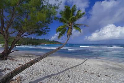 Seychelles Beach Art Print