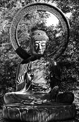Photograph - Sf Japanese Tea Garden Study 11 by Robert Meyers-Lussier