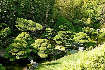 Photograph - Sf Japanese Tea Garden Study 8 by Robert Meyers-Lussier