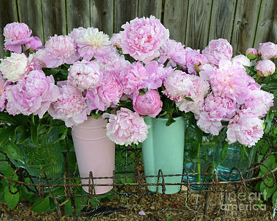 Photograph - Shabby Chic Pink Peonies In Pink Aqua Buckets - Cottage Garden Pink Peony Prints Home Decor  by Kathy Fornal