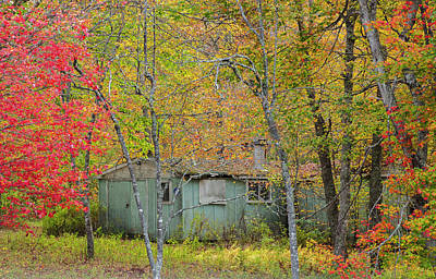 Photograph - Shack In The Fall  by Roger Lewis