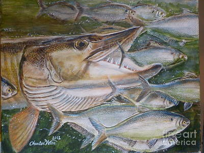 Muskellunge Painting - Shad Attack by Charles Weiss