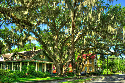 Photograph - Shade Southern Live Oak Trees Art by Reid Callaway