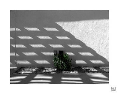 Photograph - Shade That Bush by Stan  Magnan