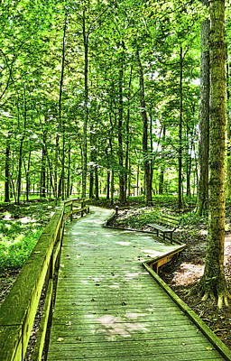 Photograph - Shaded Boardwalk Retreat - Mammoth Cave National Park - Kentucky by Greg Jackson