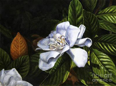 Shaded Gardenia Original