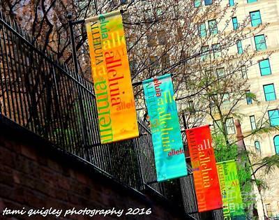 Photograph - Shades Of Alleluia by Tami Quigley