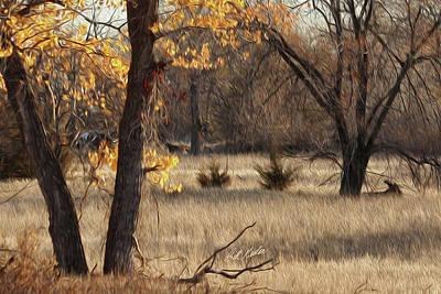 Shades Of Autumn Art Print by Bill Kesler