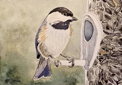 Painting - Shades Of Black Capped Chickadee by Sonja Jones