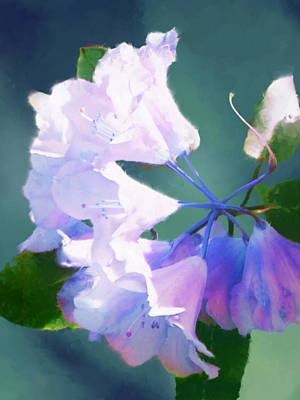 Digital Art - Shades Of Passion Study2 by Patrick Turner
