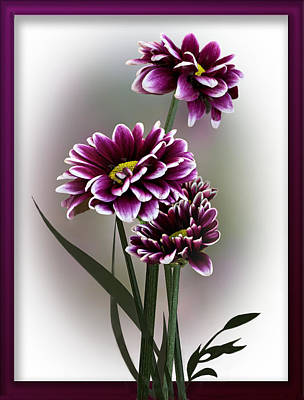 Photograph - Shades Of Purple by Judy Johnson