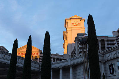 Photograph - Shadow And Light - Las Vegas Sunrise With Caesars Palace And Cypress Trees by Georgia Mizuleva