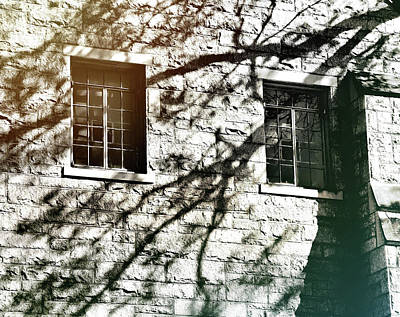 Photograph - Shadow Days by JAMART Photography