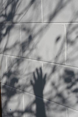 Susana Maria Rosende Photograph - Shadow Hand by Susana Maria  Rosende