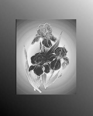 Shadow Iris II Art Print by Jacquie King