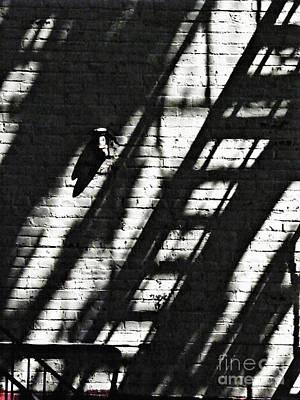 Photograph - Shadow On The Wall 2 by Sarah Loft