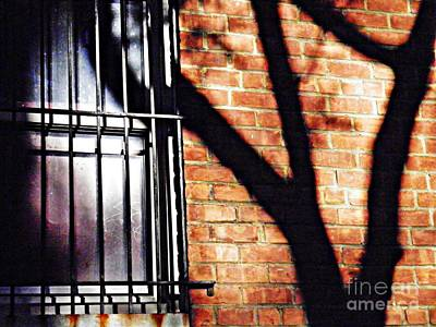 Photograph - Shadow On The Wall by Sarah Loft