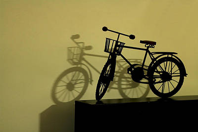 Photograph - Shadow Play by Ramabhadran Thirupattur