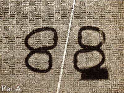 Photograph - Shadow Study No.88 by Fei A