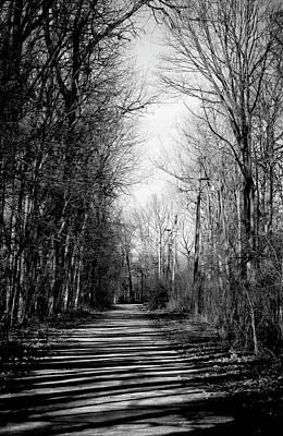 Photograph - Shadow Walk by Shawna Rowe