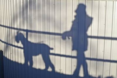 Portret Photograph - Shadow Walking With The Dog by Irene Vital