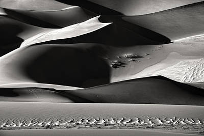 Sand Dune Photograph - Shadowland by Izidor Gasperlin