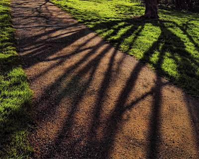 Photograph - Shadows 2 by John Bushnell
