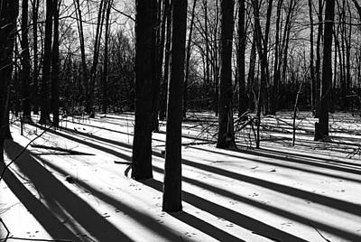 Photograph - Shadows And Tracks by Debbie Oppermann