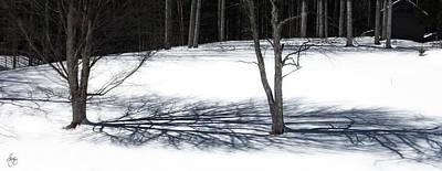 Photograph - Shadows At Noonday by Wayne King